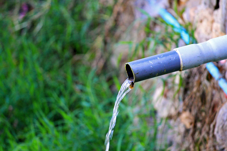 Close-up of water pipe on grass