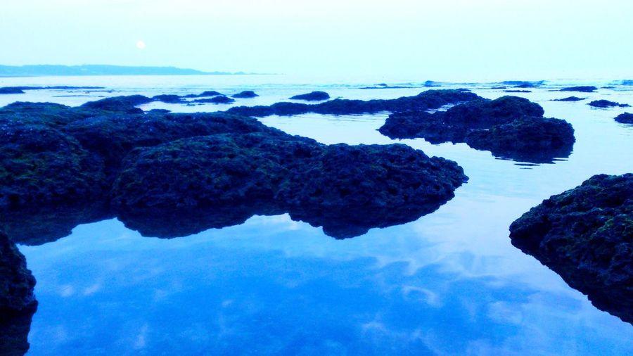 寧靜革命 Sea