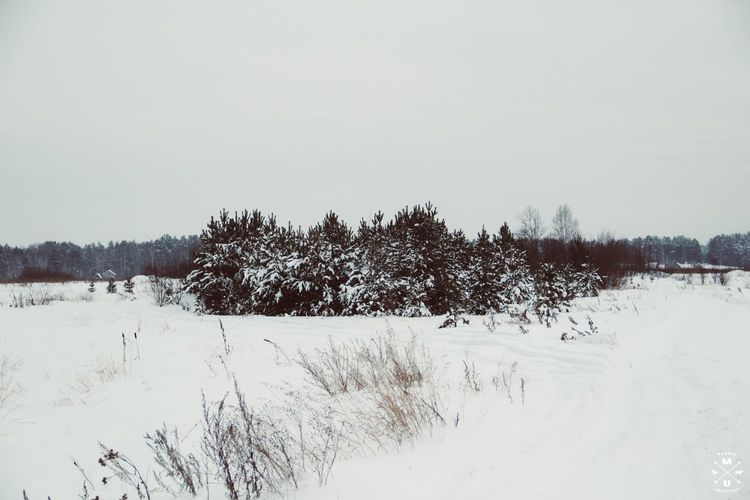 урал снег Russia россия Hello World First Eyeem Photo зима Hi! деревня ель.