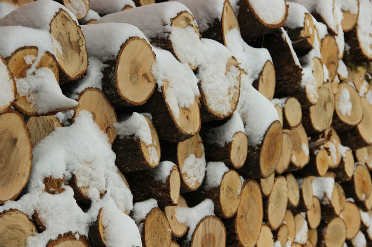 Firewood Chopped Forestry Nature Pile Of Wood Stack Tree Tree Trunk Winter Chopped Trees Chopped Wood Cold Cold Temperature Energy Fireplace Firewood Lumber Pile Season  Snow Stacked Timber Trunk Tree