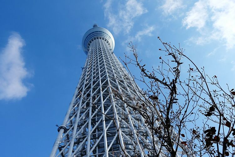 Tokyo Skytree reaching for the skies Tokyo Skytree Sky Travel Travel Photography