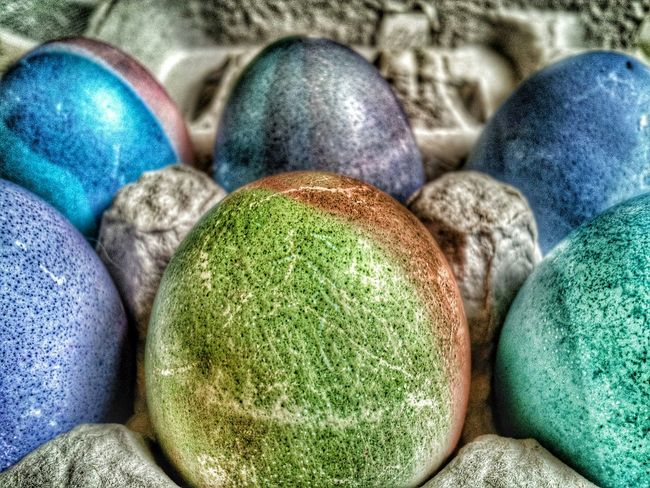 Colored Easter eggs Easter Happy Easter Easter Eggs Color Eye4photography  EyeEm Best Edits Easter Egg Easteregg Egg Egg Shells Egg Carton Close-up Closeup Close Up Eggshell Eggs Carton Taking Pictures Colored Easter Ready Colorful Editorial Photography Editorial  Selective Focusing Food Up Close