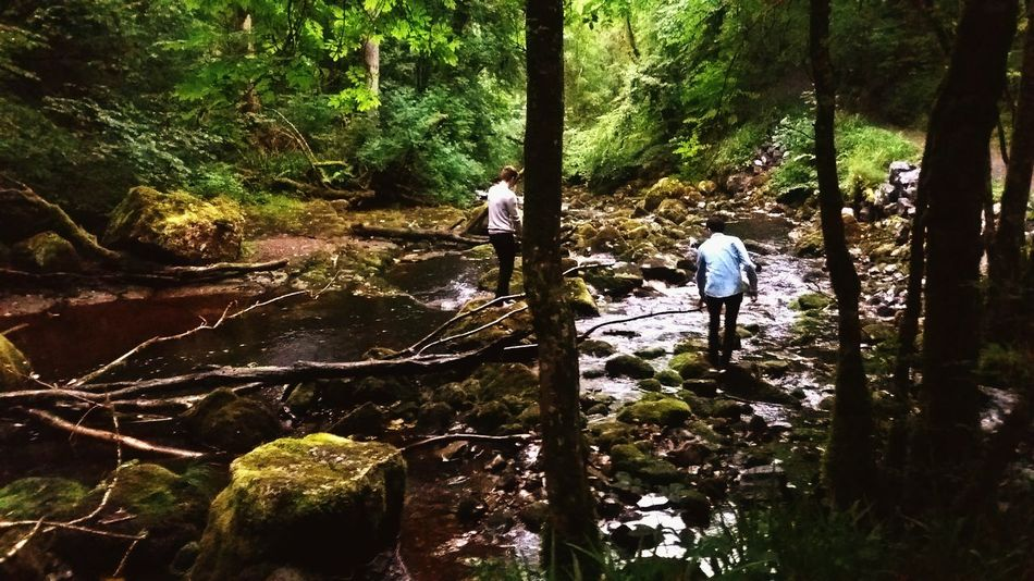 Cladagh Glenn Fairy World Ireland🍀 Ireland <3 Lush Trees And Nature Out Walking Water Rocks And Water People And Places