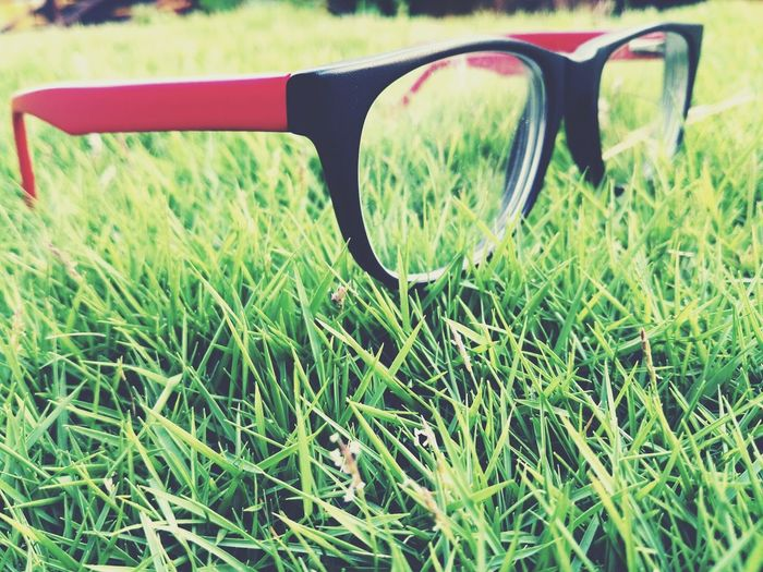 Grass Field Close-up No People Day Growth Green Color Nature Outdoors First Eyeem Photo