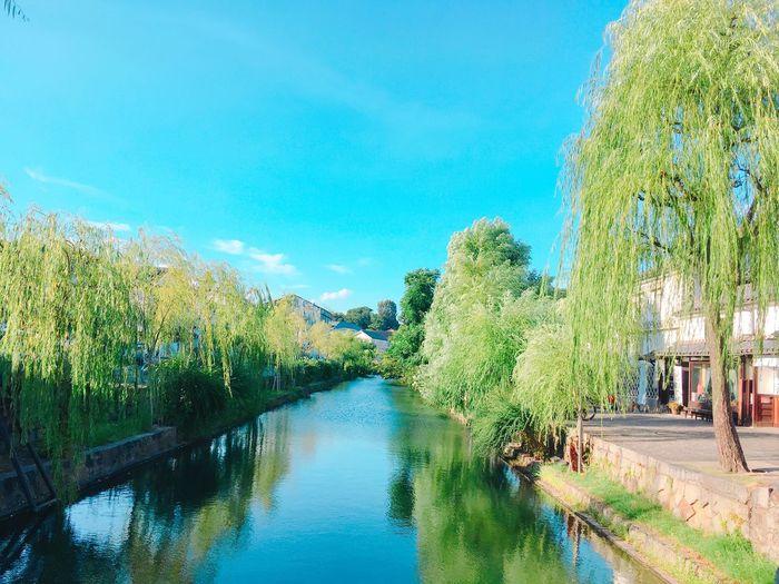 "Japanese tourist spots. ""Kurashiki aesthetic area"" Aesthetic Area Japanese Tourist Spots Water Tree Plant Nature Sky Reflection Beauty In Nature No People"