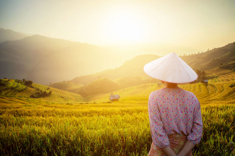 Farmer in Mu Cang Chai Vietnam One Person Land Landscape Field Environment Sky Rear View Sunlight Hat Nature Rural Scene Adult Agriculture Plant Mountain Beauty In Nature Sunset Farm Sun Crop  Outdoors Lens Flare Vietnam Vietnamese Rice Paddy