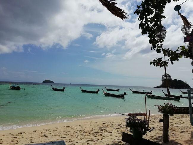 Tree Water Sea Beach Sand Palm Tree Summer Awe Sun Blue Seascape