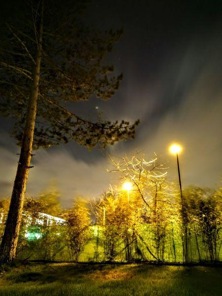 Nuit, arbre, ciel Sky Tree Cloud - Sky Dramatic Sky Illuminated Nature No People Outdoors