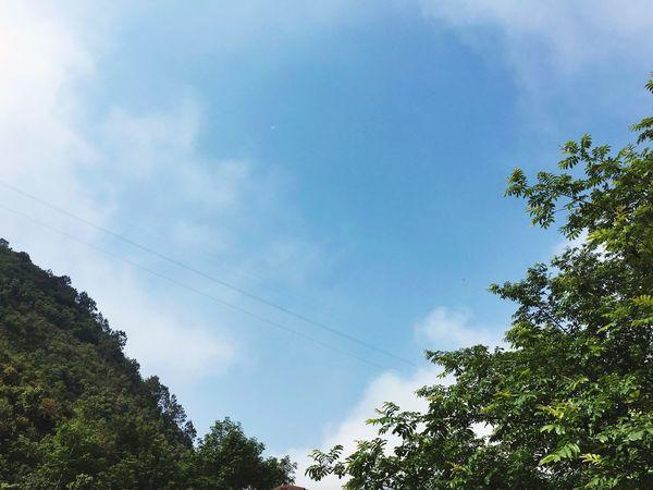 Natural Beauty Sky And Clouds Blue Sky Green Green Green!  卸了QQ微信后脱离网瘾少女称号,你要是再装高冷超过二十个小时没电话短信QQ微信给我,我就去撩学哥了