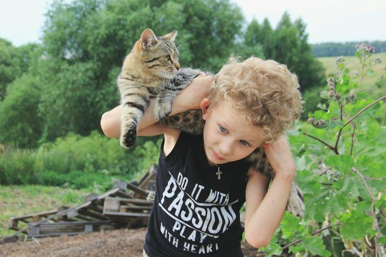 Enjoy The New Normal Blue Eyes Cat Friends Willage голубоглазый кудри малыш
