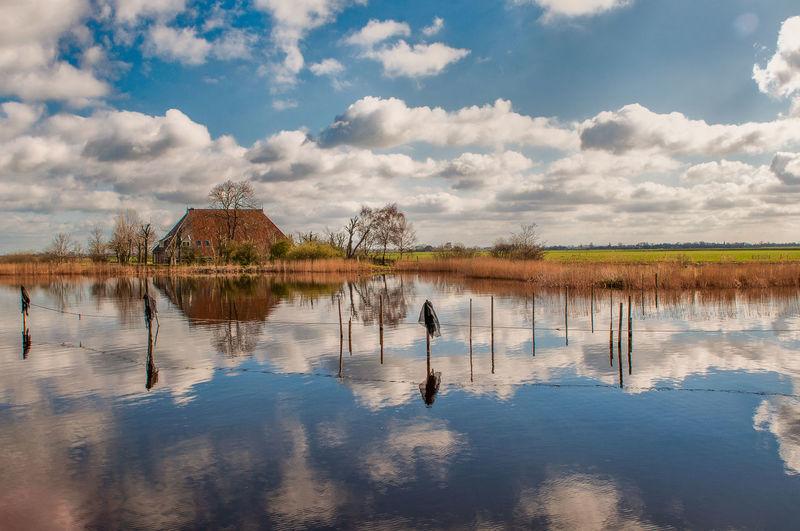 Clouds Daylight Friesland Nederland No People Reed Reeds, Weeds, Marshland, Marsh, Rural Rural Landscape Rural Scene Tree Water Water Reflections