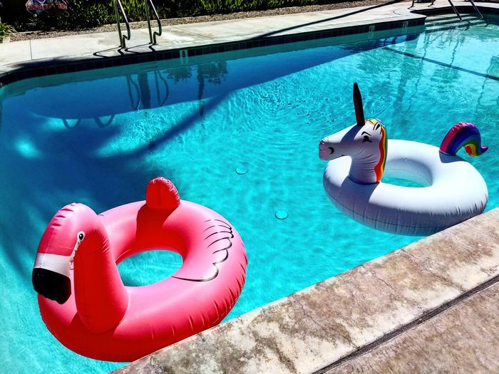 High angle view of flamingo and unicorn shaped inflatable rings on swimming pool