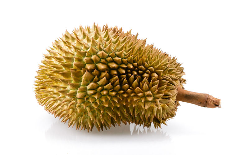 Studio Shot White Background Close-up Freshness Indoors  Food And Drink No People Still Life Food Plant Flower Spiked Cut Out Tropical Fruit Healthy Eating Green Color Nature Wellbeing Beauty In Nature Sharp Flower Head Spiky