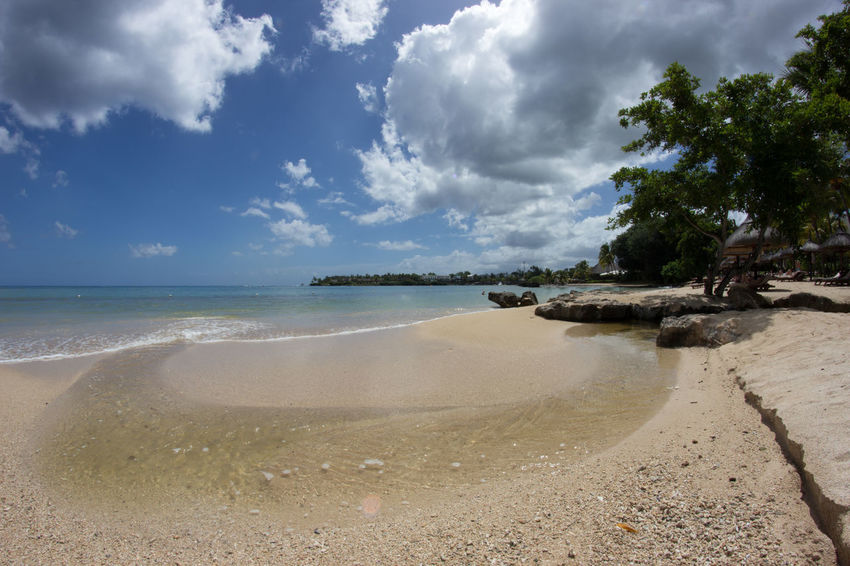 Beach Beauty In Nature Blue Sky Clouds And Sky Fisheye Horizon Over Water Landscape Mauritius Nature Outdoors Photography Sand Sea Tree Water