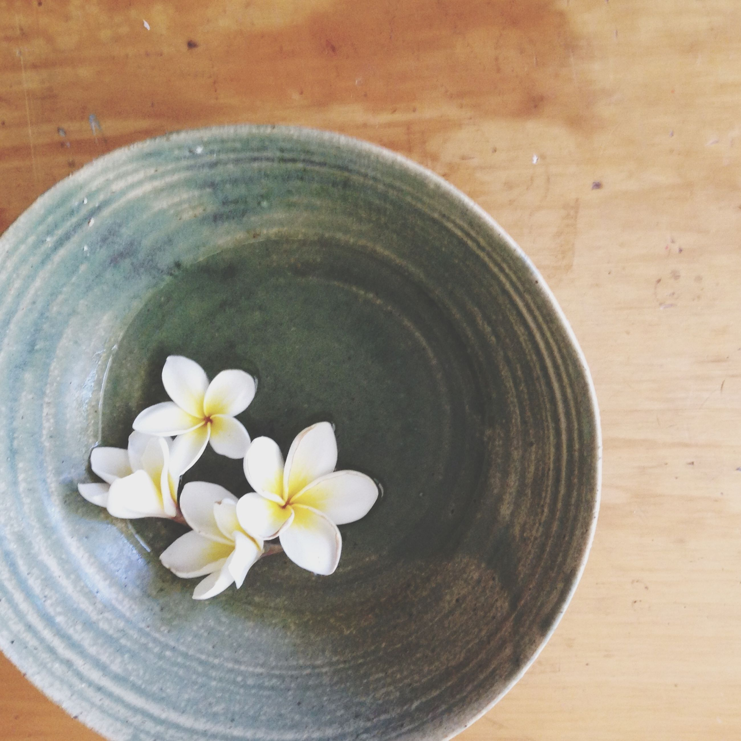 indoors, freshness, table, still life, directly above, high angle view, flower, food and drink, close-up, wood - material, bowl, fragility, no people, healthy eating, circle, white color, wooden, overhead view, food, vase