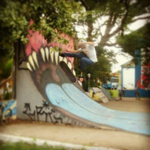 Skateboard Skate Style 360flip me sk8