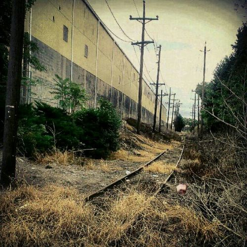 I hear the train a comin'...It's rollin' around the bend... Train Tracks Urban Landscape Urbex Abandoned & Derelict Partnersingrime Railroad Tracks Filthyfeeds #filthyfamily  Abandoned Places Findingbeautyoutofshit Lousyfeeds Forgotten Places  Urban Exploration