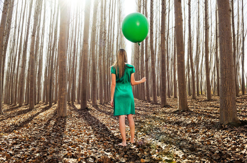 Rear view of woman holding balloon while standing in forest