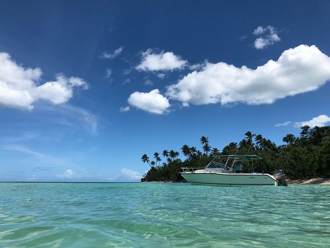 Clear skywater Puertoricotourism Puertorico PlayaBuyé Water Sky Sea Cloud - Sky Beauty In Nature Nature Scenics - Nature Day Waterfront Tree Plant Nautical Vessel Blue Idyllic Holiday Travel Transportation Vacations Trip Outdoors