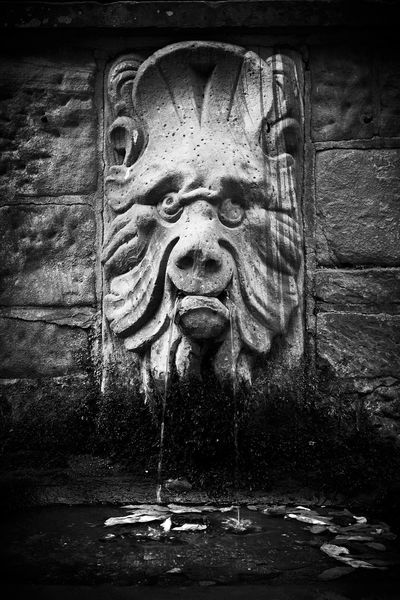 Aschaffenburg - Bavaria Germany Portrait Stone Wall Dark Mood Tranquility Tranquil Scene Silence Melancholy EyeEm Gallery Light And Shadow Lucky's Memories Lucky's Monochrome Monochrome Monoart Blackandwhite Blackandwhite Photography Gargoyle Contrast Leaf Moss Autumn Water Close-up Drop Sculpture Calm
