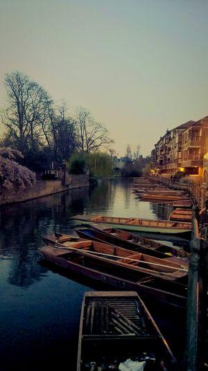 Cambridge,