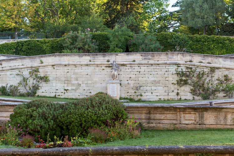 Gardens in front of Palais des Papes, Avignon Architecture Avignon Built Structure Day Grass Green Green Color Growing Growth Lush Foliage Nature No People Outdoors Plant Stone Surrounding Wall Tranquility Travel Destination Tree