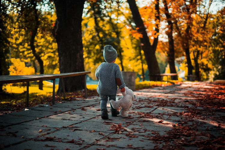 Rear view of child with teddy bear walking on footpath during autumn