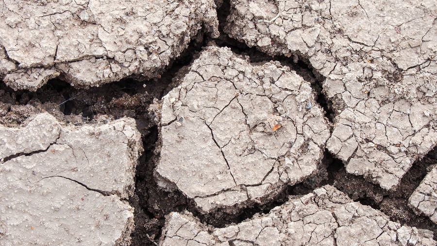 Close-up cracked ground Desert Flooring Nature Split Textured  Wall Abstract Arid Climate Backdrop Backgrounds Broken Brown Close-up Cracked Design Drought Dryness Mud Nature No People Outdoors Pattern Rough Soil Surface Level
