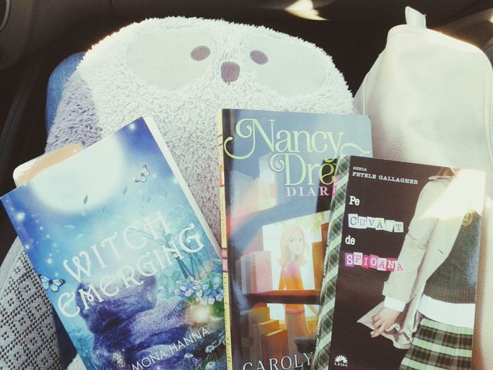 Books for yesterday's road trip. Did not get to start Nancy Drew yet. I am really enjoying Cross My Heart And Hope To Spy by Ally Carter. It's a fun book.