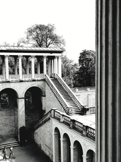 stairway to heaven Potsdam Park Sanssouci Blackandwhite Atmospheric Mood Stone Material Still Life Structures Shadows & Lights Stairs EyeEm Best Shots EyeEm Selects EyeEmBestPics EyeEm Best Shots - Black + White monochrome photography Royal Palace Stairway To... Architectural Column Clear Sky Arch History Tree Sky Architecture Building Exterior Built Structure Triumphal Arch Monument Memorial Place Of Interest Colonnade