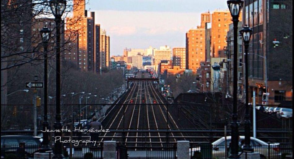 My Neighborhood New York, New York StreamzooPics Streamzoofamily
