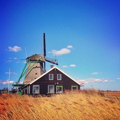 Incredible Place ☀?#zaanse_schans #holland #alan_in_amsterdam #windmill Insta_holland Holland Flippingkewiki Windmill Gotd_120 Zaanse_schans Igersholland Ink361_blue Piclab Gramoftheday Worldwidephotowalk Kewikihighlight_bestsofar Iaminamsterdam Mokummagazine Alan_in_amsterdam
