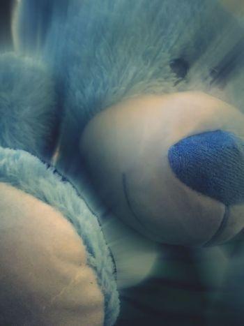 Tedybear Toyphotography Teddy Bear Teddy Bears Teddy Bear 🐻 TEDDY LOVE