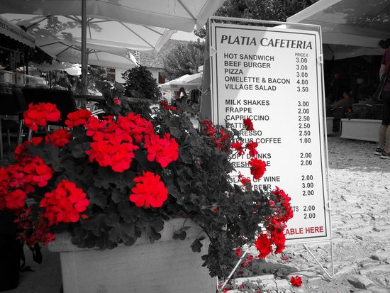 restaurant in ancient Cypriot village Flower Flower Head Business Store Retail  Variation Red Text Small Business