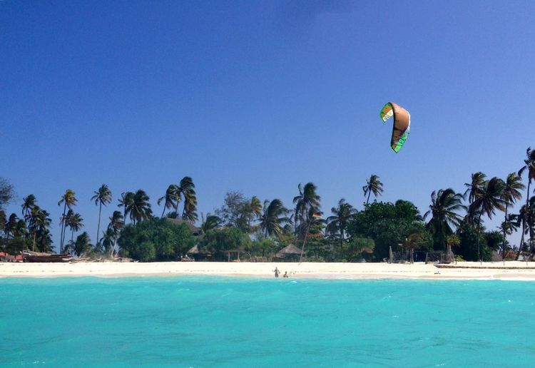Tourists enjoying paragliding at beach