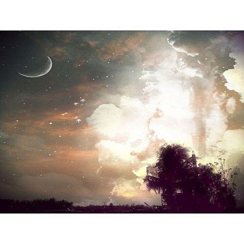 Pixlr Overlay Skyfell Trees Sun Sky Practicedaily Practice