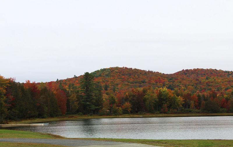 Water Autumn