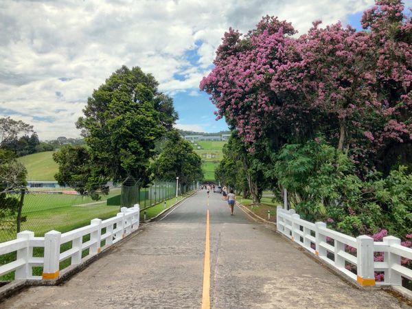 Granja Comary Petrópolis Serra Serra Fluminense Highwaytoheaven