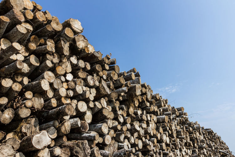 Low Angle View Of Logs Stacked Against Sky