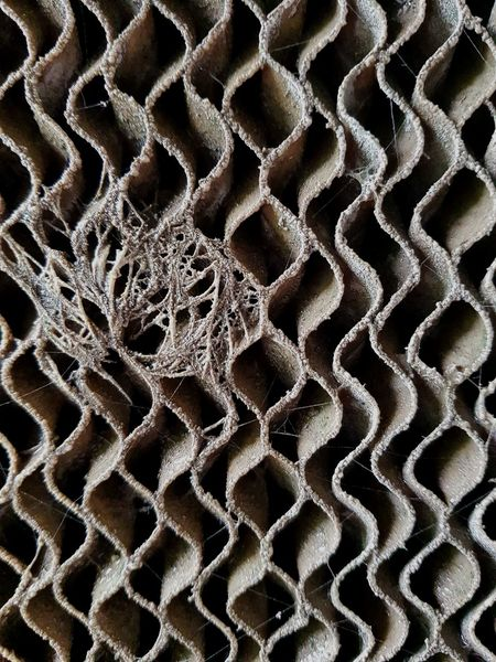 Cooling pad & spider web 🕸 Backgrounds Full Frame Pattern Textured  No People Day Spider Spider Web Cooling  Evaporation House Swine