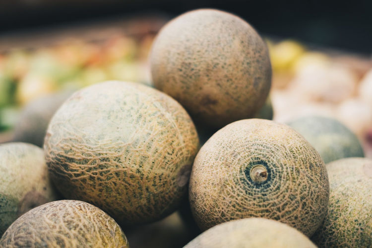 Close-up of melon