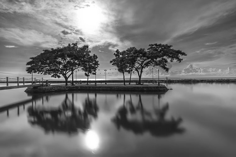 Reflection of palm trees in lake against sky