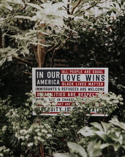 Diversity Love Wins American Patriotism USA Our America