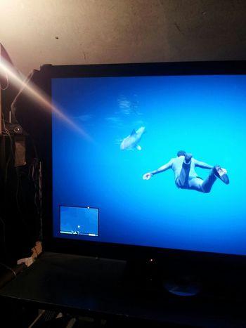 finally killed the shark GTAV