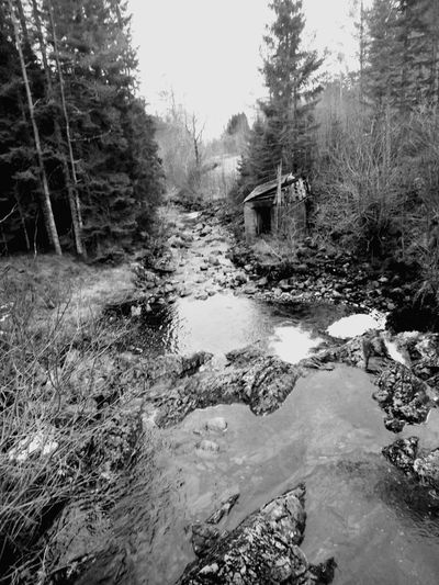 Derelick Nature River Norway🇳🇴 Outdoors No People Hello World Blackandwhite