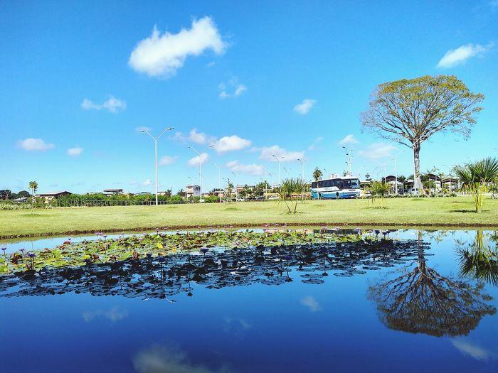 bela natureza em meio a correria🌳❤️ Water Lake Reflection Agriculture Sky Cloud - Sky