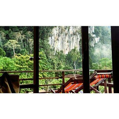 3 ชม.ของการขึ้นเขาEnjoying Life Asian Culture Thailand Culture Kaosok Suratthani Enjoying Life Sleeping Guten Morgen