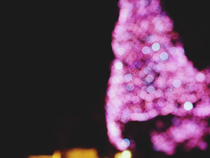 Japan 玉ボケ あえて Night ファインダー越しの私の世界 Black Background Defocused Flower Pink Color Multi Colored Close-up Purple Christmas Lights Bauble christmas tree Christmas Blooming