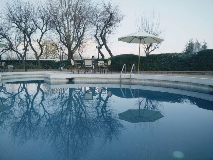 By the pool Parasol Umbrella Lunch By The Pool Reflection Blue Water Vacations Shot On Oneplus Pakistan EyeEmNewHere Travelling Tree Water Winter Bare Tree Reflection Swimming Pool Sky Reflecting Pool Pool