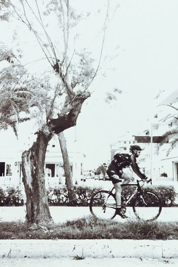 bikin' Tree Transportation Building Exterior Architecture Nature Plant Cold Temperature Winter City Bicycle Day Real People Land Vehicle Mode Of Transportation
